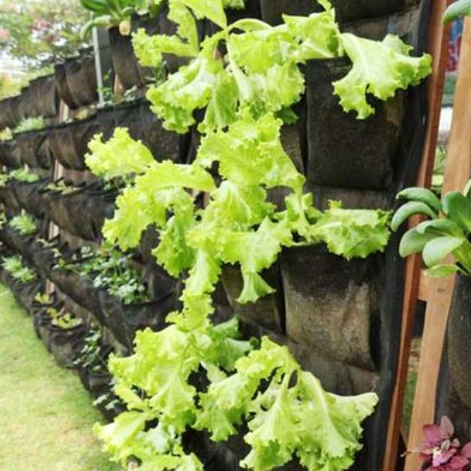 Geotextile Vertical Garden, Harga & Spesifikasinya Klik…